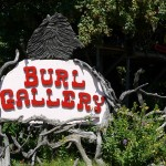 Burl Gallery