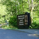Entrance to the Redwood National & State Parks