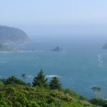 Roadside ocean view